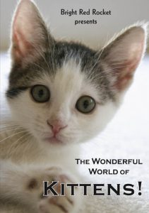 wonderful world of kittens dvd